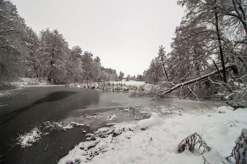 зима, лес, река, озеро, вода, усмань, снег photo preview