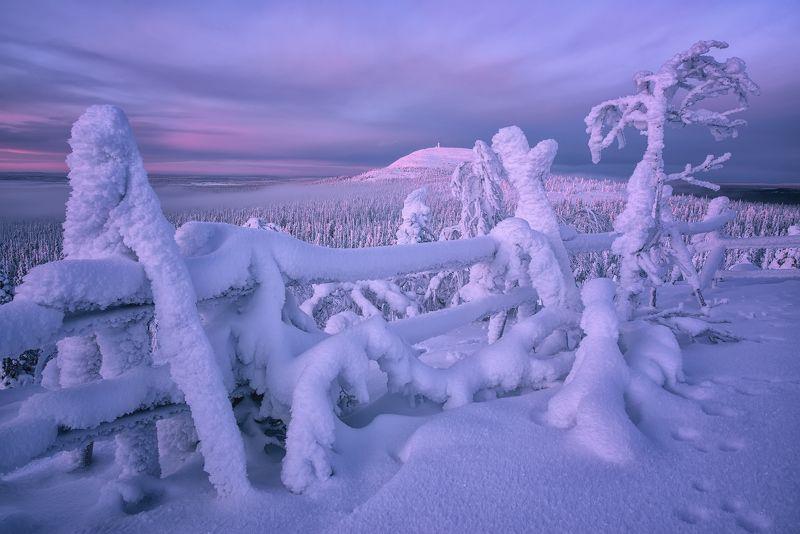 Где-то в Лапландии...photo preview