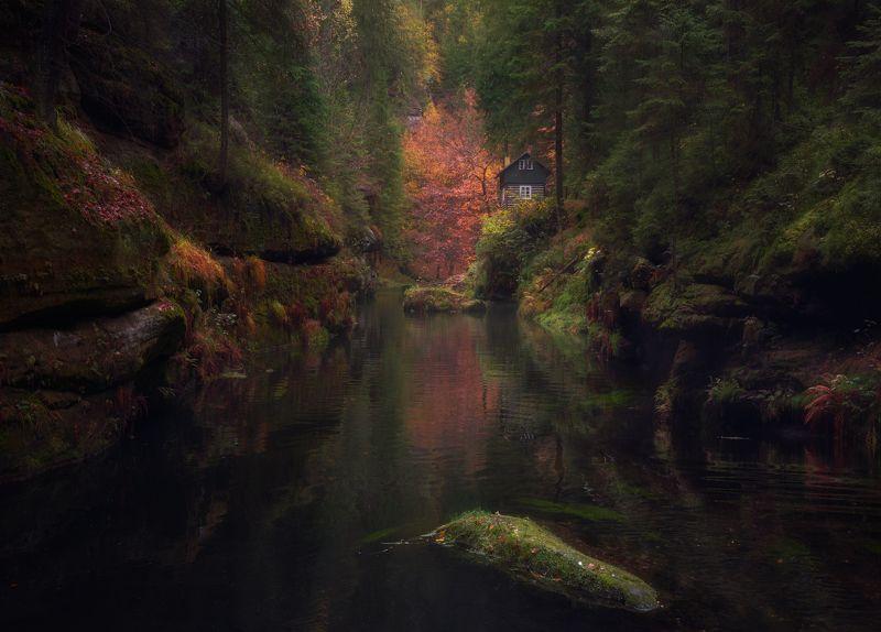 осень, река, лес, скалы, вода Затерянный в глубинах осени.photo preview