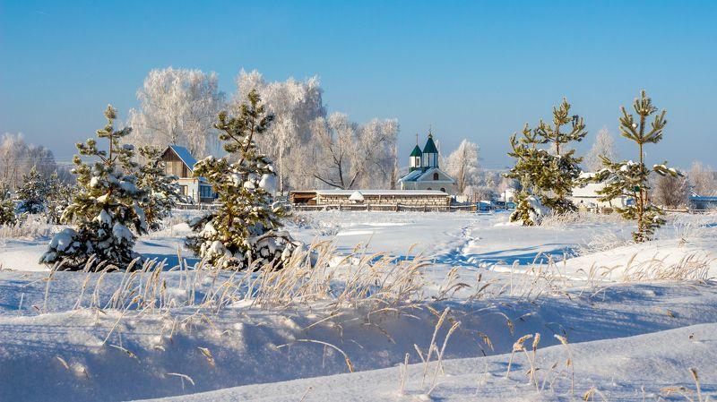 церковь, храм, сосны, мороз, иней, зима, деревня photo preview