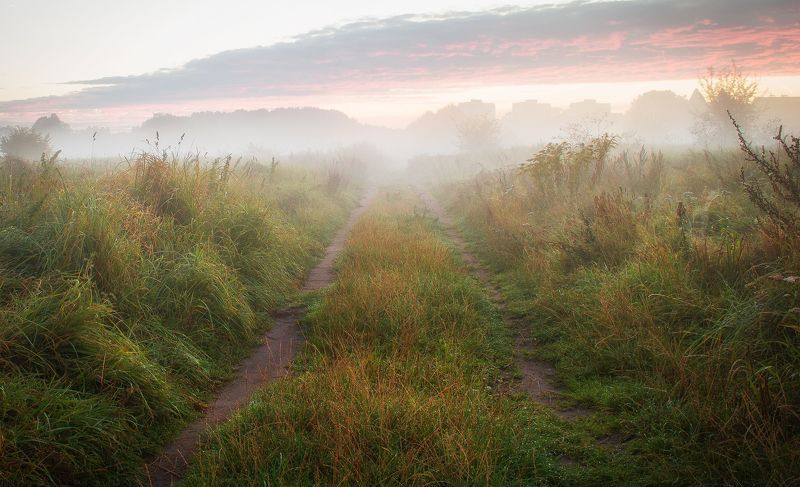 fog,autumn,nature,sky,landscape,nikon,clouds,road,mist,light The way homephoto preview