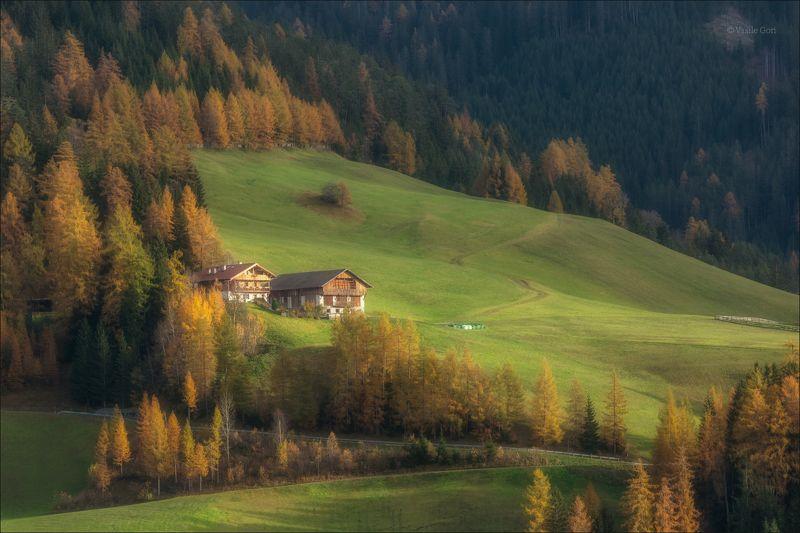 доломитовые альпы,val di funes,италия,осень,деревня,santa maddalena,свет,деревенский пейзаж,alps. Домики в Альпахphoto preview