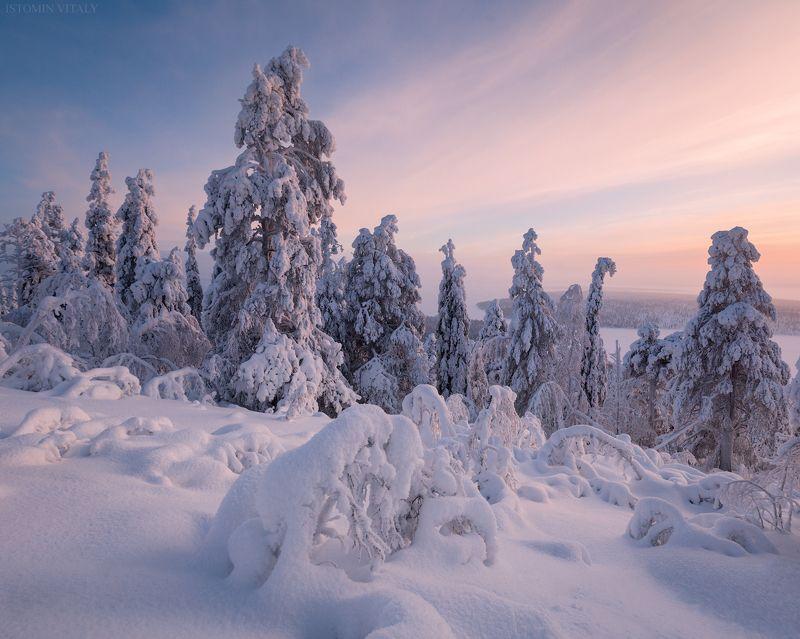 пейзаж,хибины,россия,снег,зима,кольский,север,закат На закате дняphoto preview