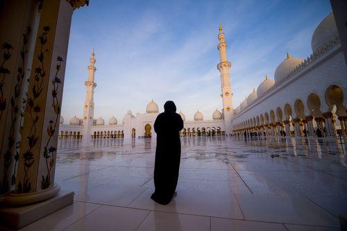 Мечеть шейха Зайда (مسجد الشيخ زايد)