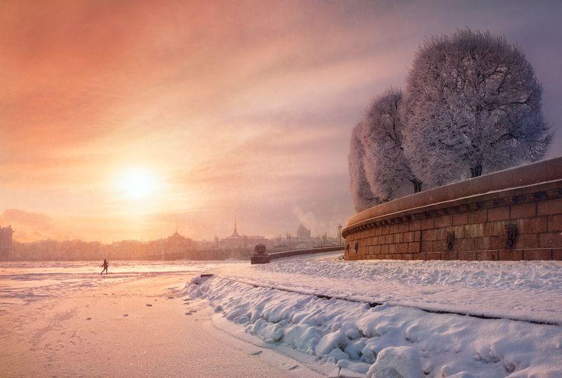 утро, солнце, петербург, деревья Мороз и солнцеphoto preview