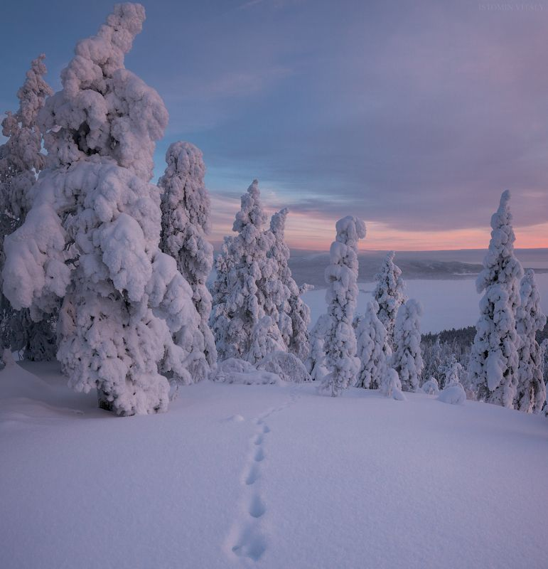 пейзаж,закат,россия,зима,кольский,север,следы,небо,панорама photo preview