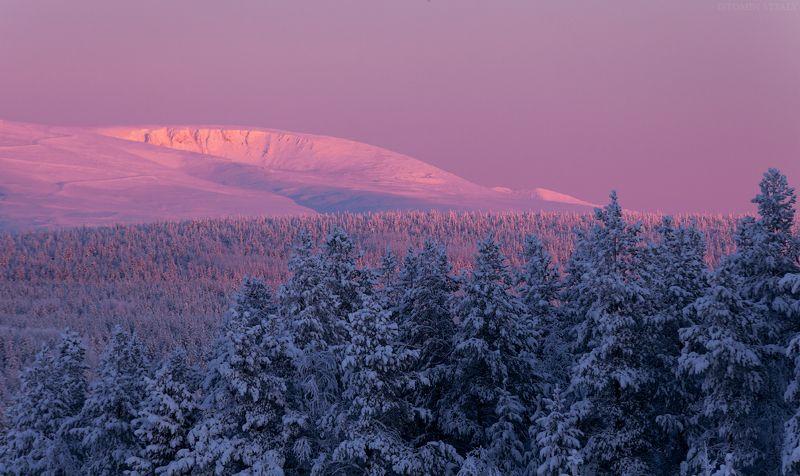 пейзаж,хибины,снег,зима,горы,кольский,север,закат,цвет,Кольский север Цвета хибинphoto preview