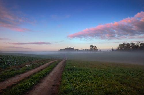 Дорога в дымку