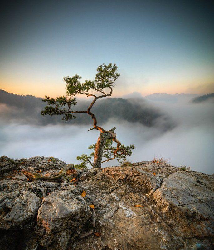 landscape,marcinkesek,light,mountains,sunrise Sokolicaphoto preview