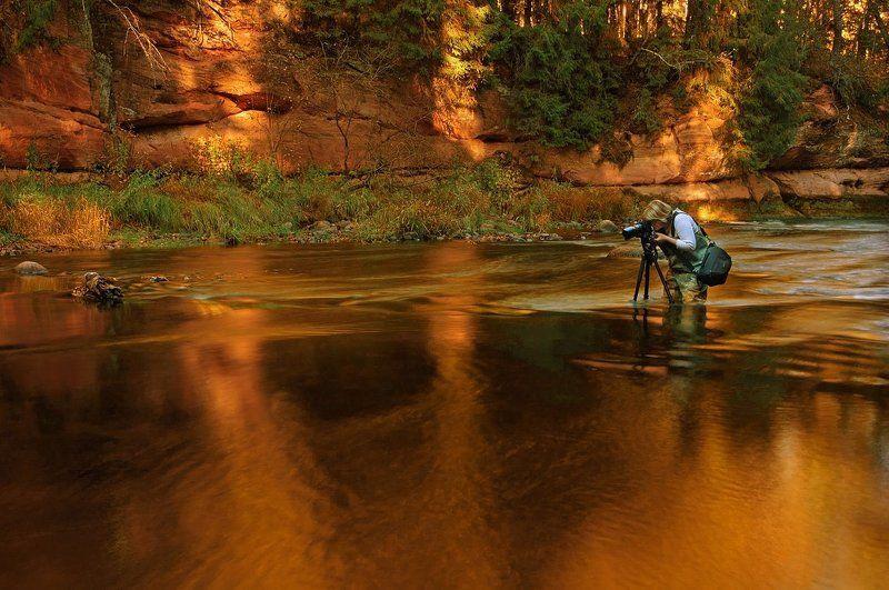 Свет - золото для фотографа.photo preview