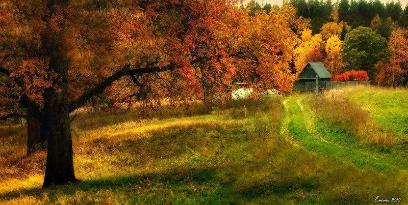природа, деревня, осень Дом на окраине.photo preview