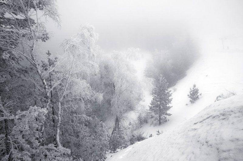 Капризы природы ранней веснойphoto preview