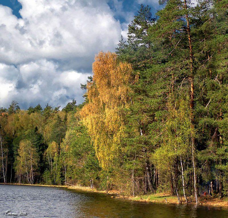 природа, , озеро, весна, тишина, подмосковье, пейзаж На \