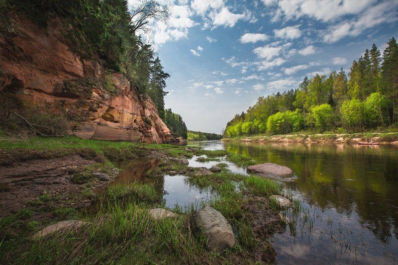 река, гауя Про весеннюю зеленьphoto preview