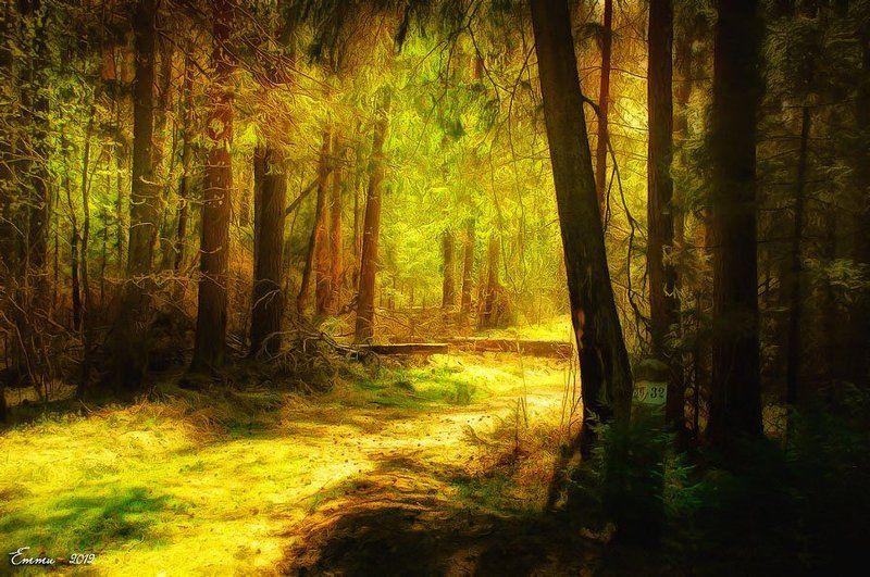 лес, природа Поворот в сказку...photo preview