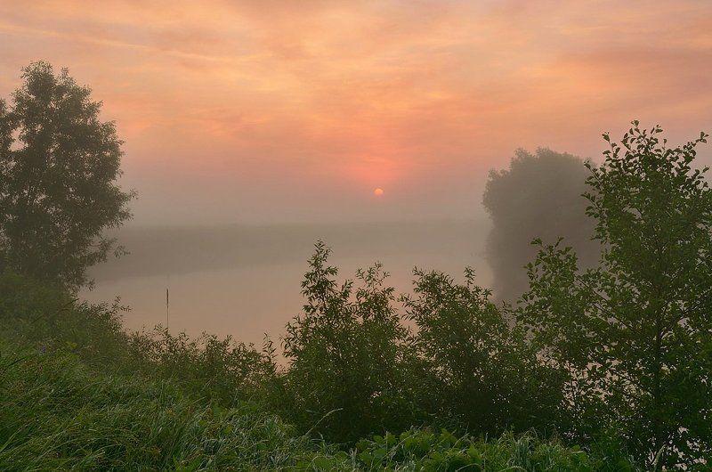 Туманный июльphoto preview