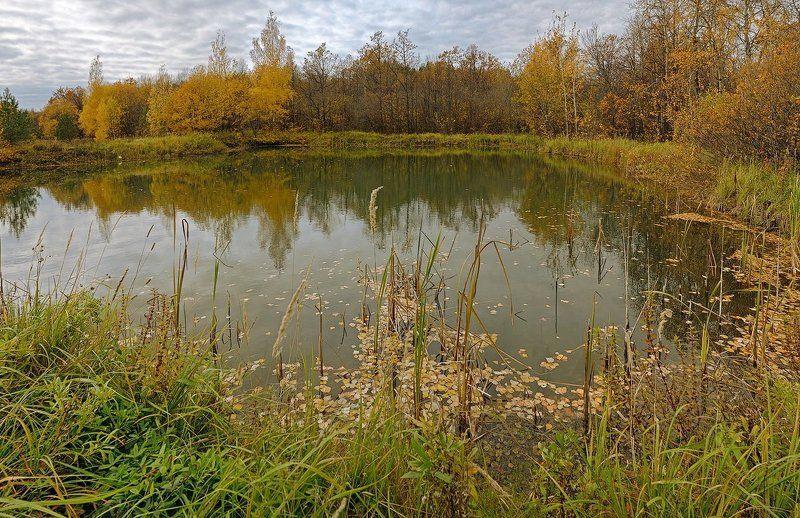 Ходит осень.photo preview