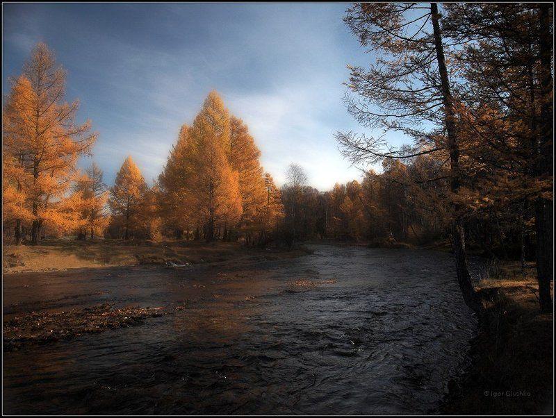бурятия, река, лиственница, осень Осенний мотивphoto preview