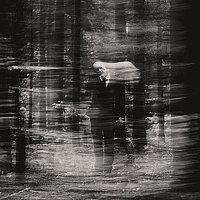 Portrait of a photographer (avatar) Игорь Тарбеев (Igor Tarbeev)
