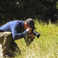 Portrait of a photographer (avatar) Balamur Erhan (Erhan Balamur)