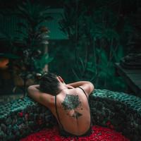 Portrait of a photographer (avatar) Safonova Anastasiia