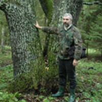 Portrait of a photographer (avatar) Андреев Юрий (Yuriy Andreev)