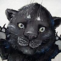 Portrait of a photographer (avatar) Михаил Набоков (Mikhail Nabokov)
