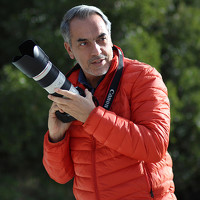 Portrait of a photographer (avatar) Lobo Henriques Luis (Luis Lobo Henriques)