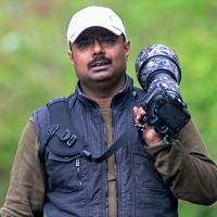 Portrait of a photographer (avatar) Bhadra Soujanya (Soujanya Bhadra)