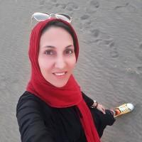 Portrait of a photographer (avatar) sharifii hadis (hadis sharifii)