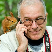 Portrait of a photographer (avatar) Юрий Сорокин (Yuri Sorokin)