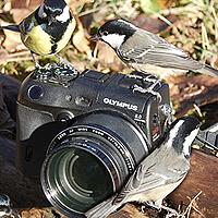 Portrait of a photographer (avatar) ПУЗЕНКО ДМИТРИЙ (Dmitry Puzenko)