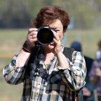 Portrait of a photographer (avatar) Оксана Колиева (Oksana Kolieva )