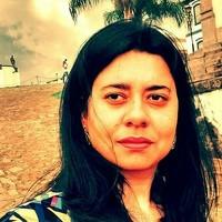 Portrait of a photographer (avatar) Fabiana de Sousa Cunha Machado