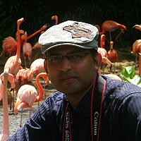 Portrait of a photographer (avatar) Sudipta Chakraborty