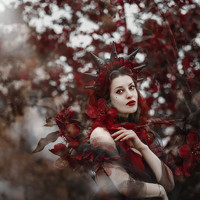 Portrait of a photographer (avatar) Терлюк Оксана (Oksana Terlyuk)